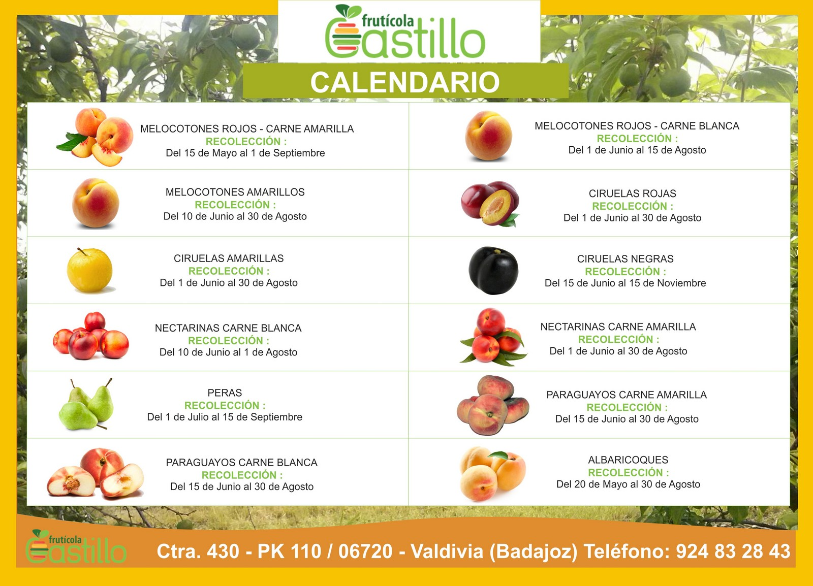 CALENDARIO-FRUTICOLA-CASTILLO